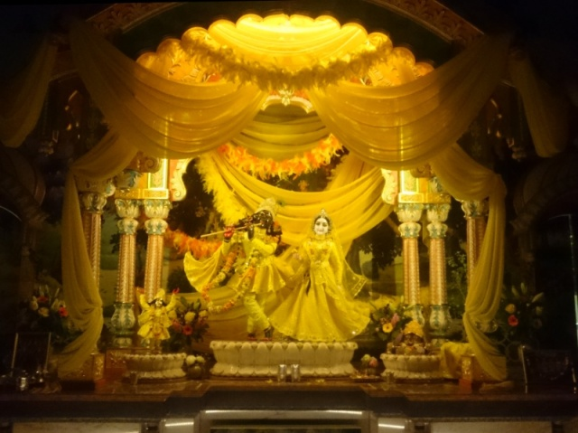 sárga Krisna 2.jpg
